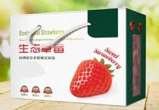 草莓箱展开印刷版平面图