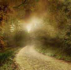 童话小路背景