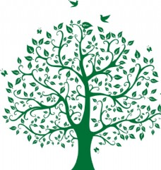 树木剪影 小鸟