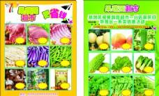 果蔬园 超市宣传单