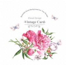 复古水彩花卉鸟类问候卡片矢量