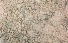 干涸的泥塘