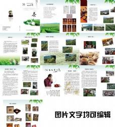 茶文化 茶叶画册
