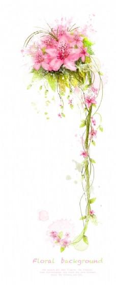 粉色百合花花藤