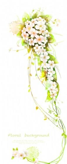 白色小花花藤