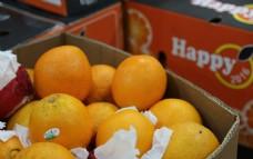 埃及橙 微信营销素材