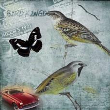 古典花鸟装饰画