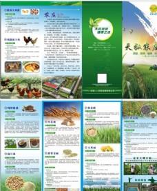 农业四折页
