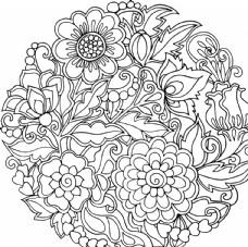 线条花卉花纹