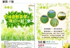 田园野菜季宣传单