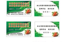 草莓  名片  PVC