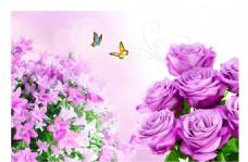玫瑰花 无框画