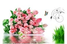 玫瑰花 装饰画